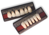 Wiedent Estetic acrylic teeth